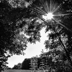 La beauté de la lumière